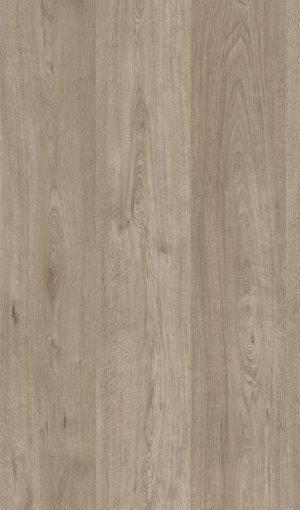 K 4591 Sopot Oak