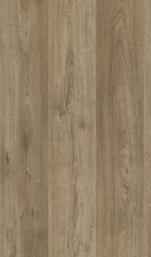 K 4592 Sopot Oak